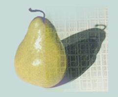 a-pear.net logo